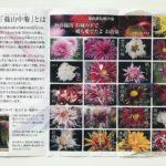 お苗菊のパンフレット